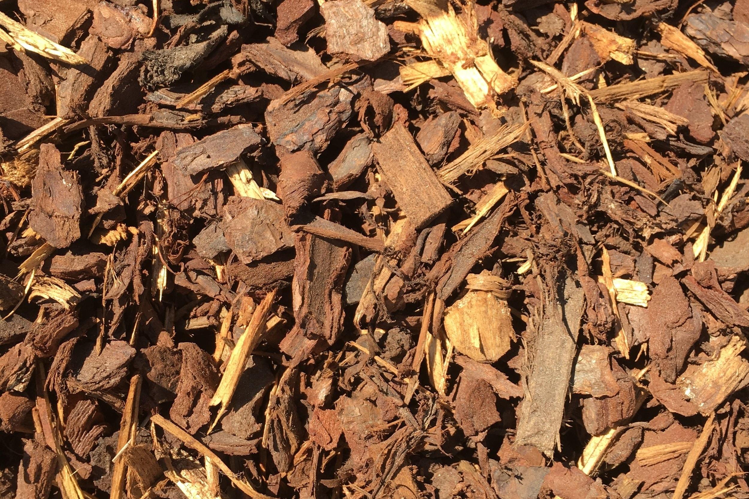 15mm Pine Bark -
