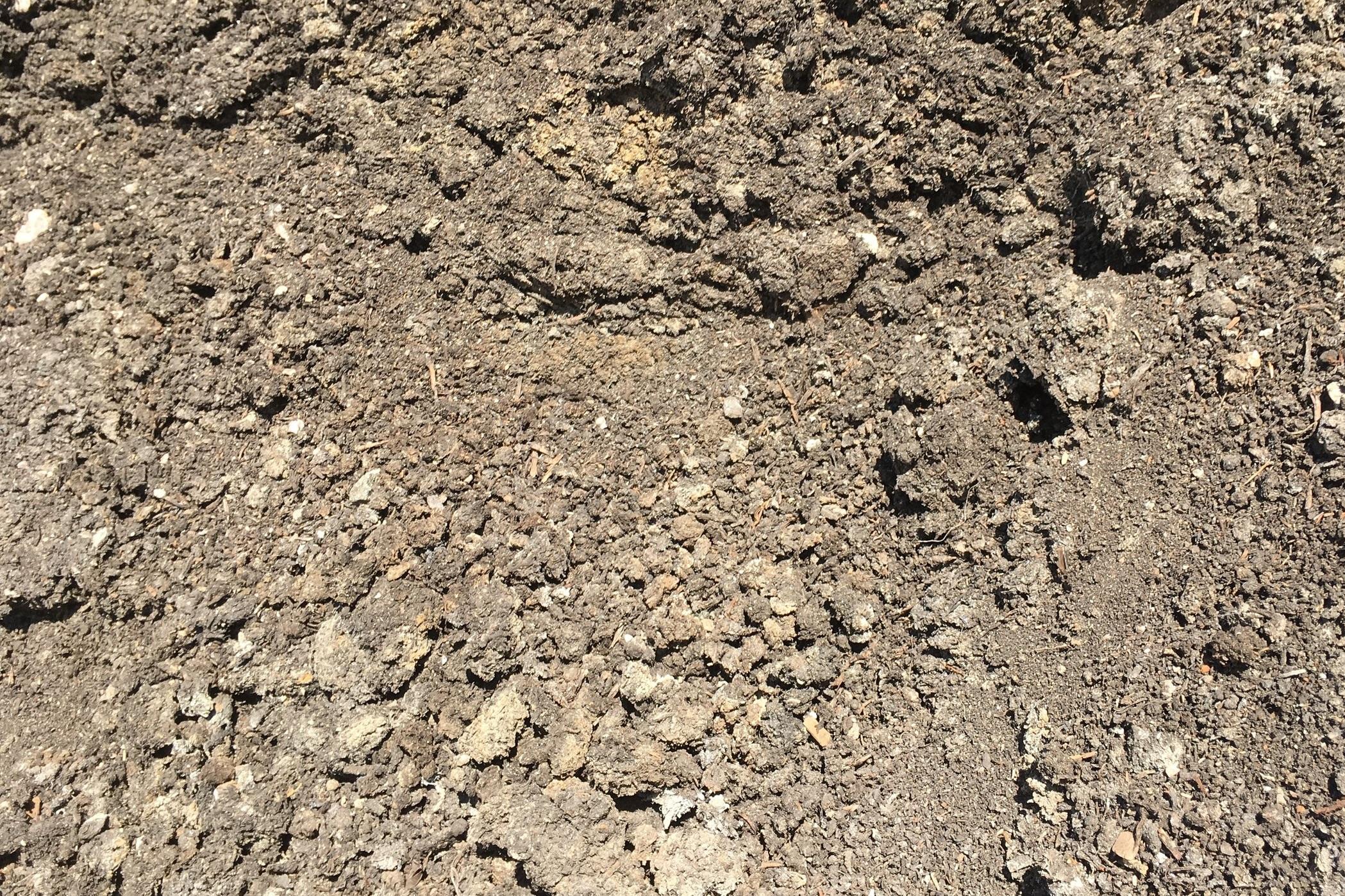 Mushroom Compost -