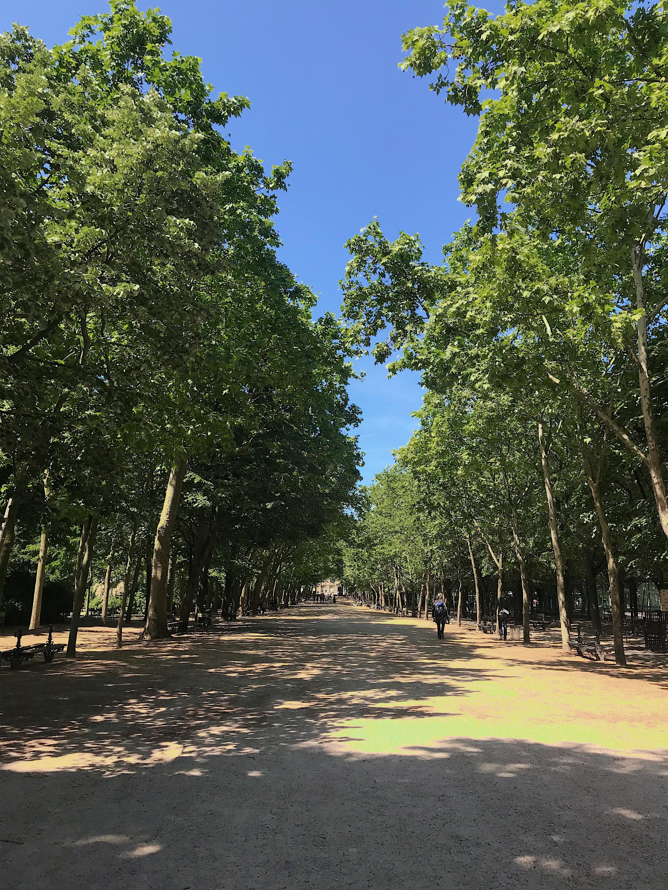 luxembourg-garden-6th-arrondissement
