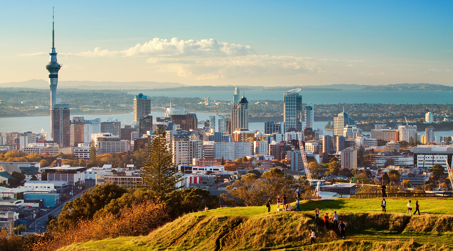 Our Practice - Our teams are based here in New Zealand. We have a strong focus on Auckland and Wellington . However we can assist no matter where you are based.