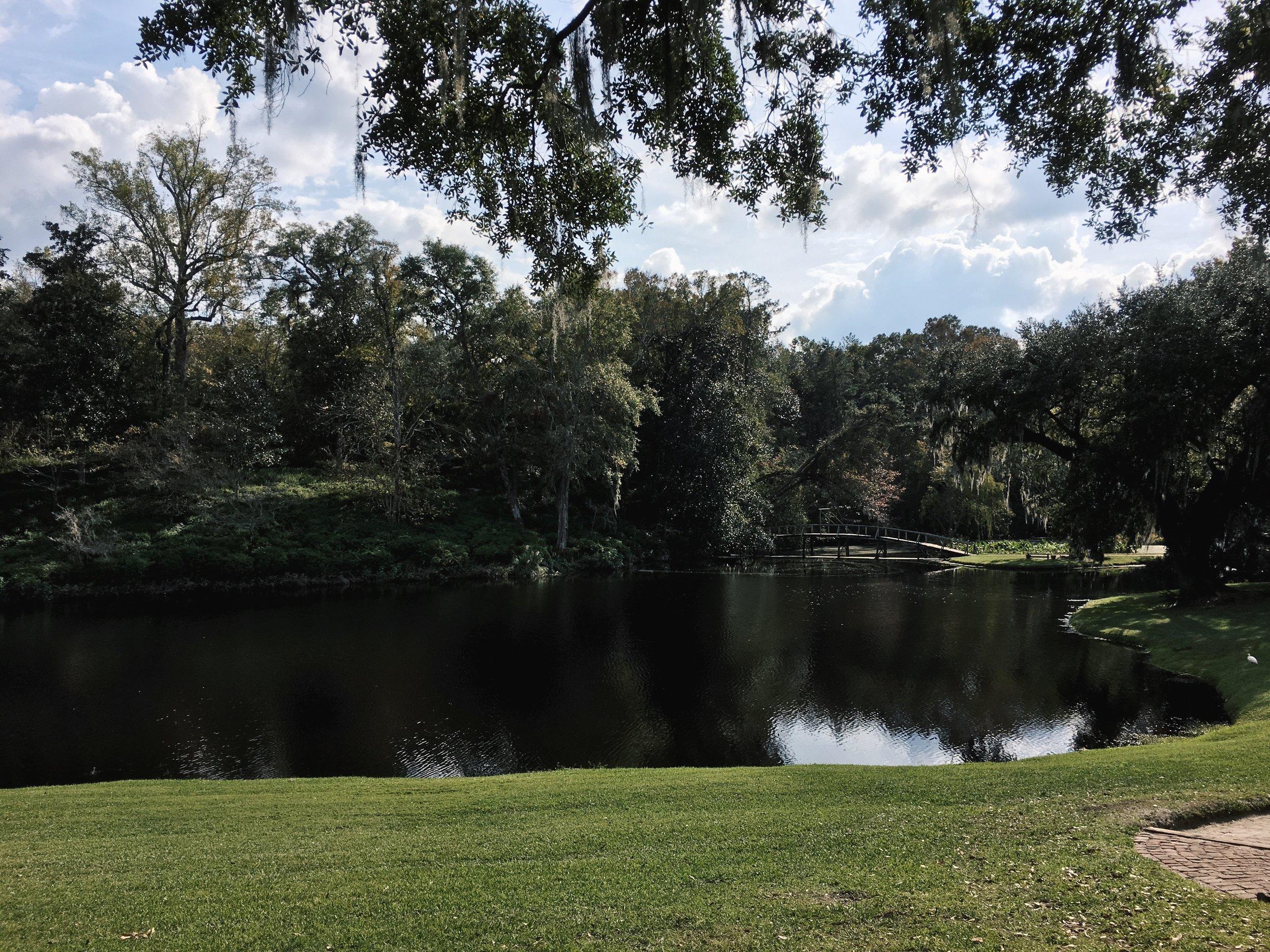 Photo by Julia Friedman of the lake at the Middleton Plantation in Charleston, South Carolina.