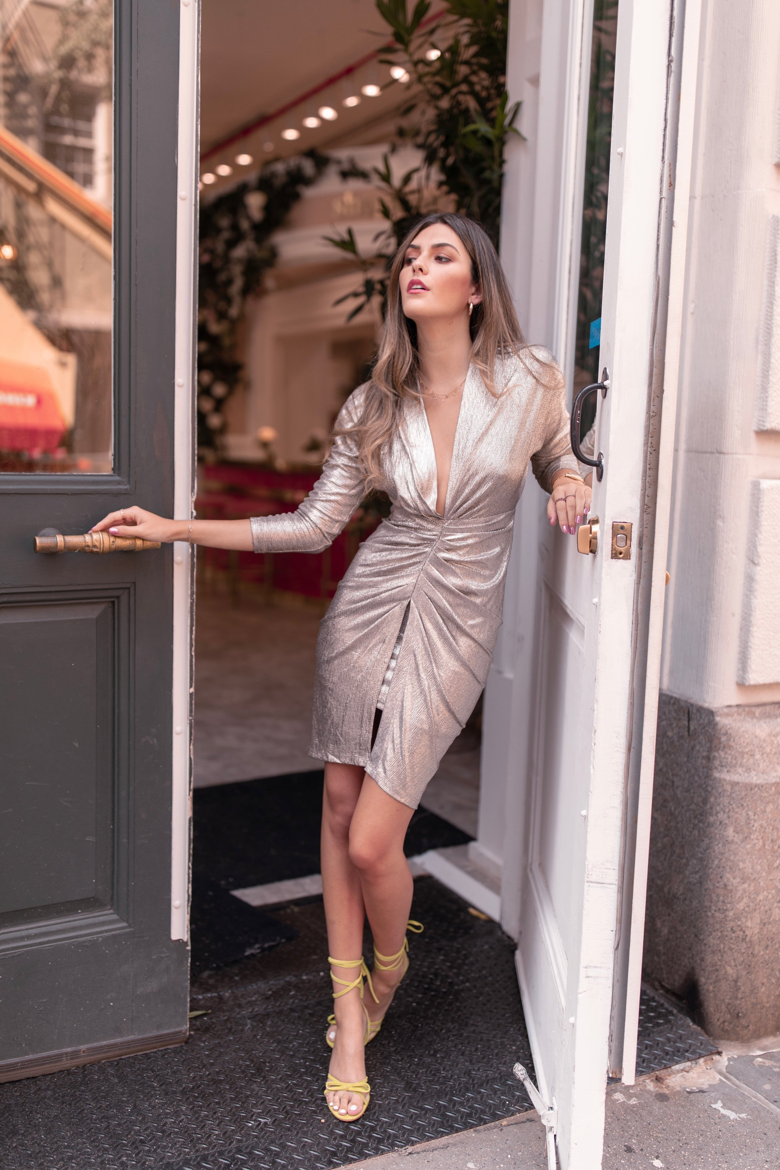 julia friedman nyfw shopbop IRO dress