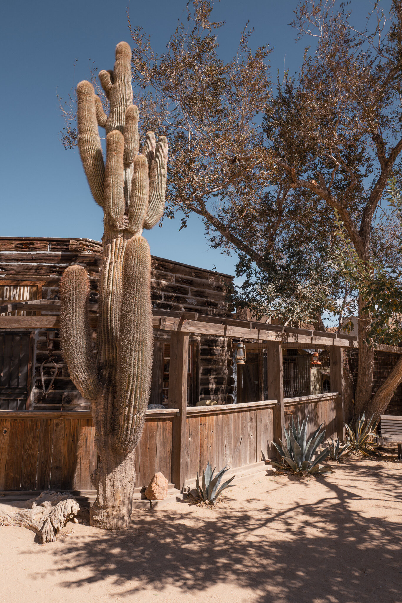pioneer town in Joshua tree  Joshua tree guide by Julia friedman everyday with j