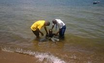 Baptisms in Tanzania, October 2016