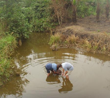 Baptism in Johnsonville Fellowship 2.jpg