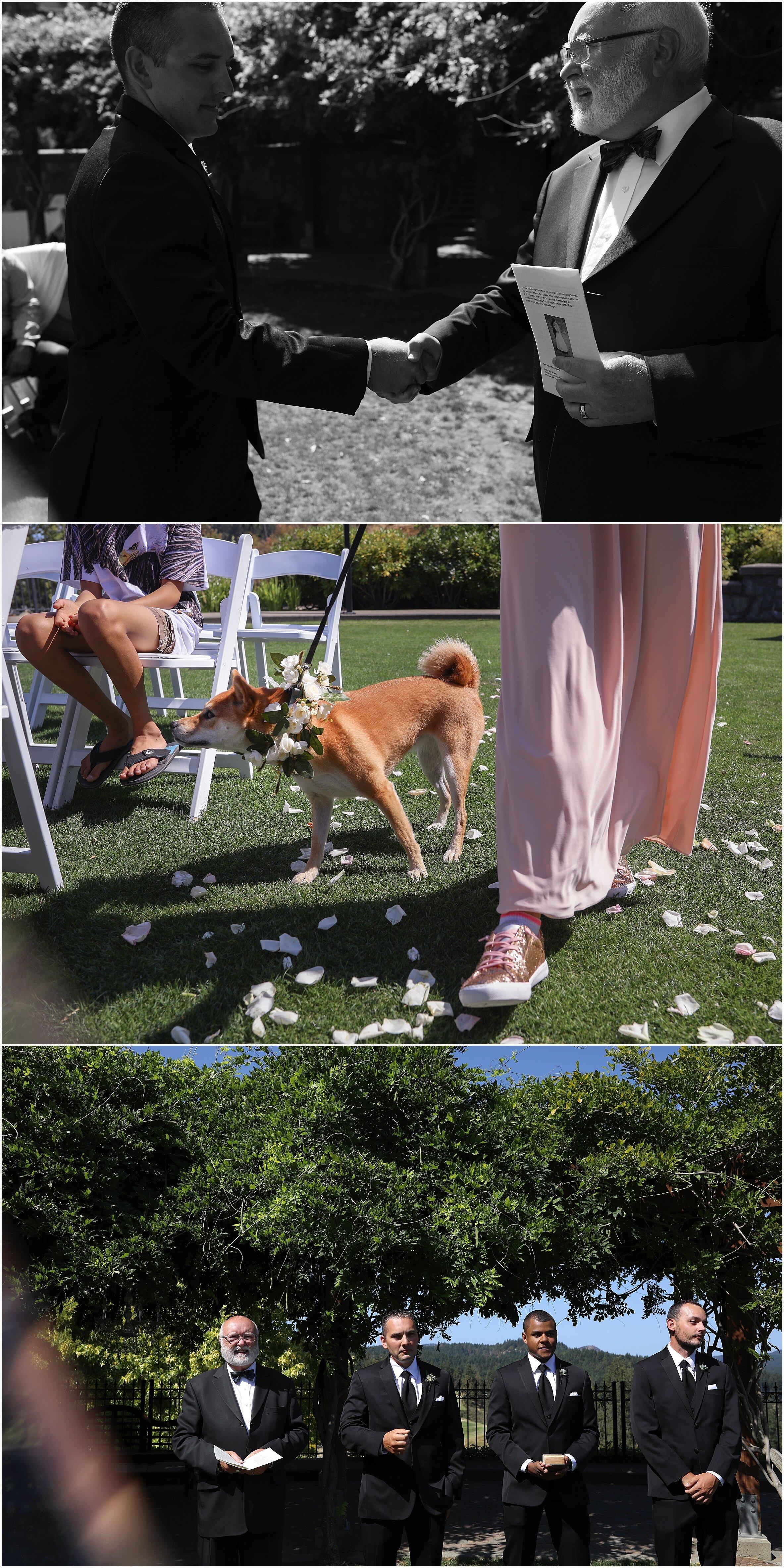 calgary-same-sex-wedding-bowness-calgary_0245.jpg