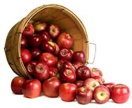 how many apples in the barrel.jpg