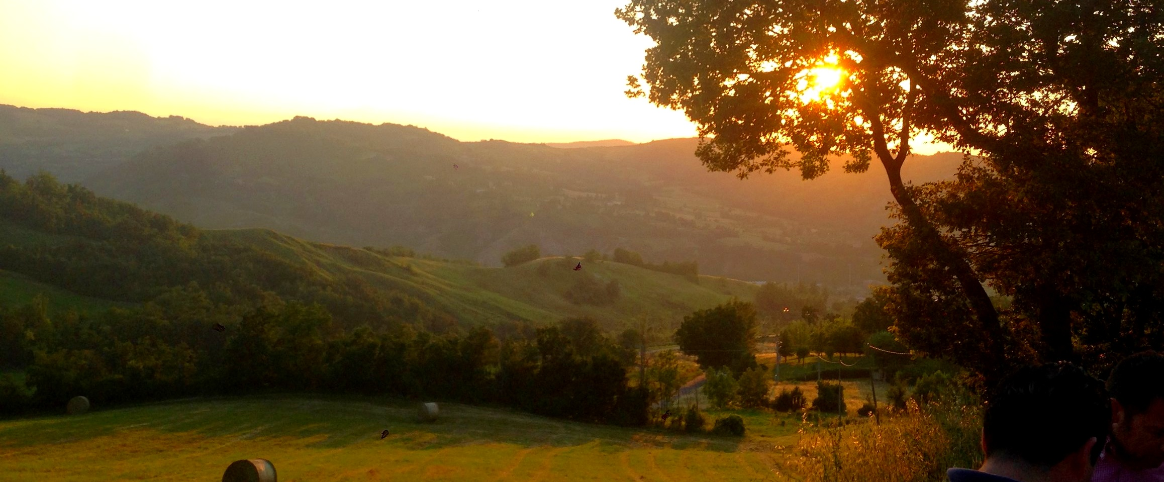 A paradise of wild mushrooms, white truffles and unordinary rural and mountain food traditions - The Valsamoggia Valley