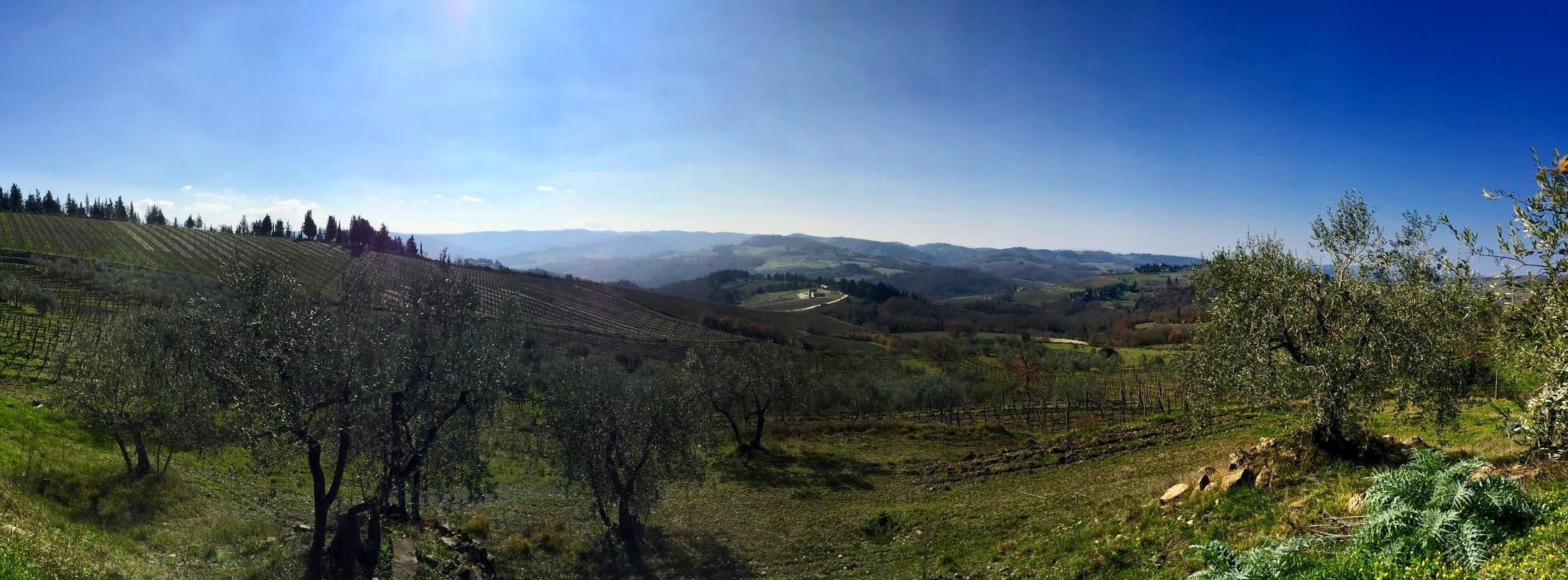 Conca d'Oro one of the most impressive countryside landscapes in Italy - Chianti