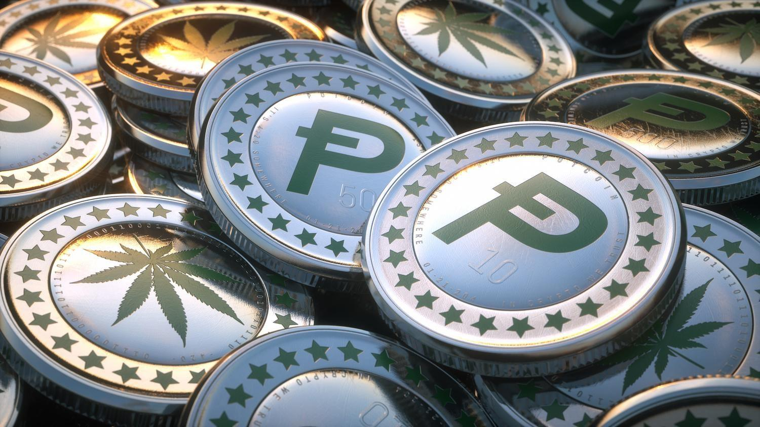 MPowering Cryptocurrency. - Cryptocurrencies are changing the rules on how underserved markets can grow. They assist in developing a more connected and accessible world for people everywhere by processing transactions with low network charges across super-secure peer-2-peer networks. This makes significant savings in costs and greatly improves scalability.So to do our part for the industry we accept PotCoin (POT) for projects related to cannabis/hemp/CBD.