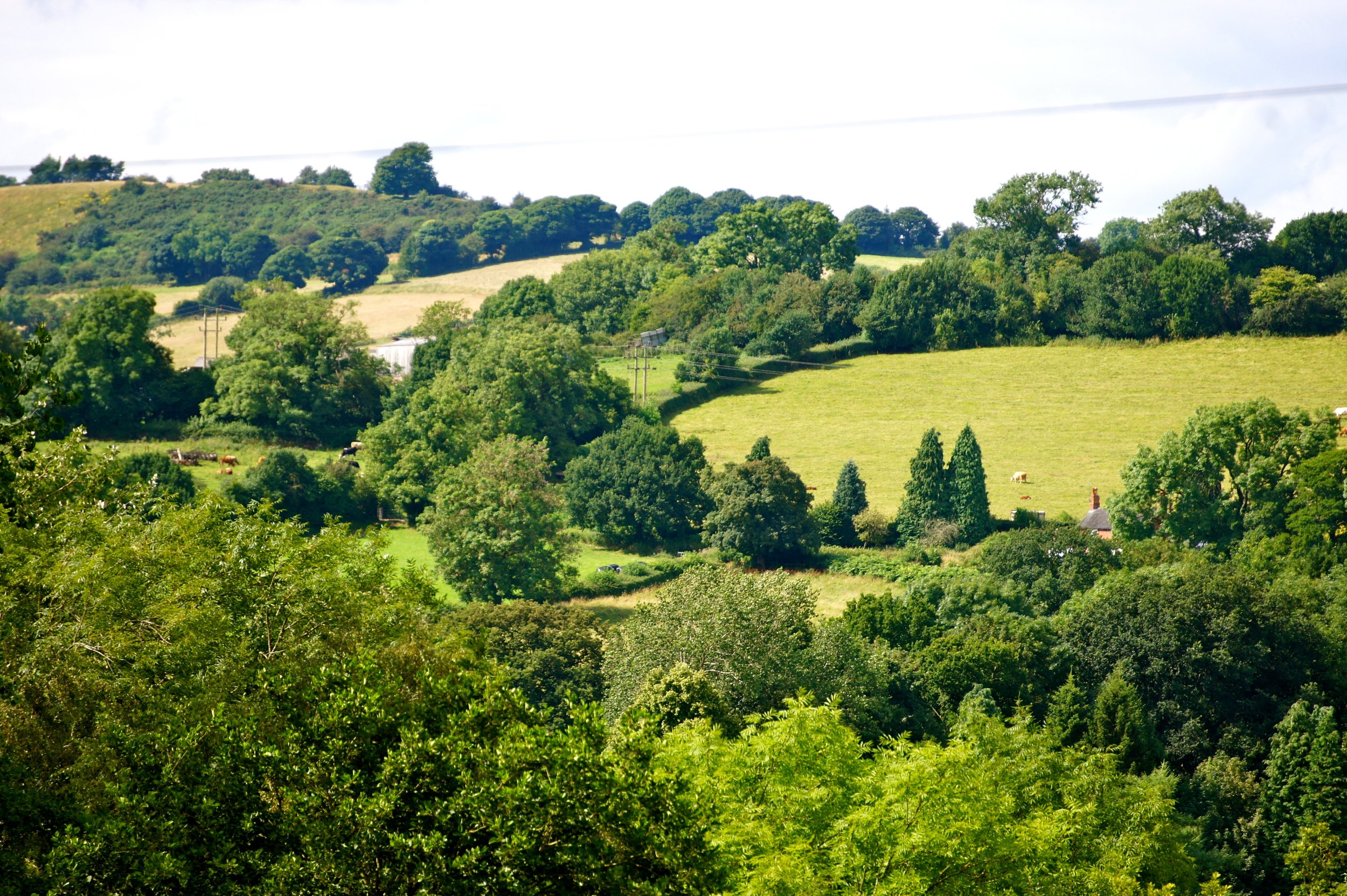 Beautiful views of the Derbyshire Dales