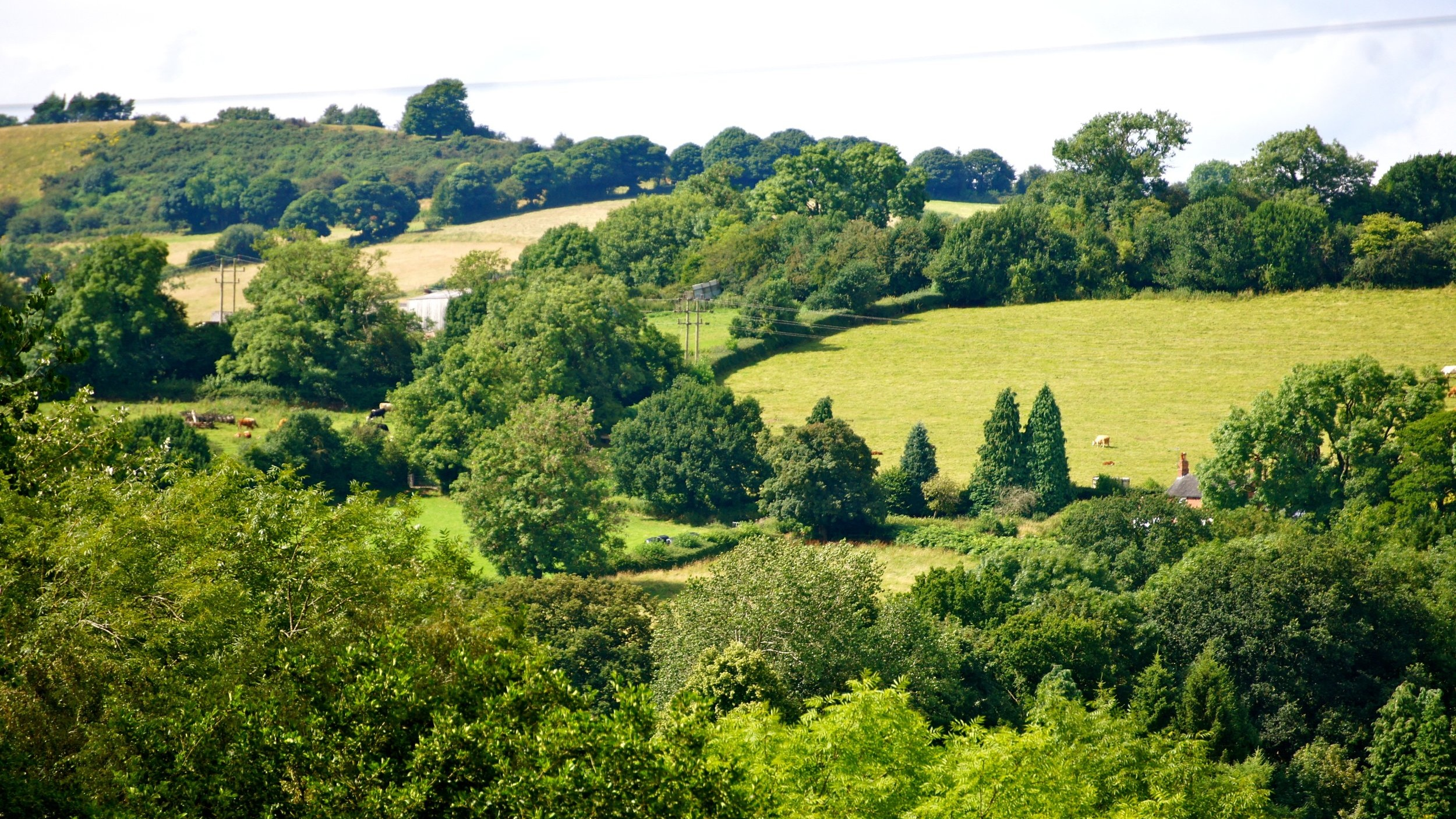 Little Thatch holiday cottage hillside