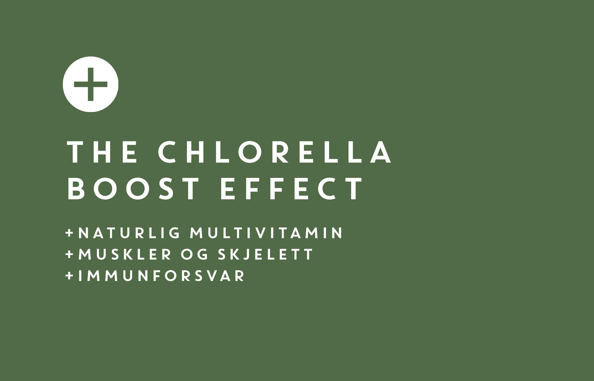 Chlorella2 siste.jpg