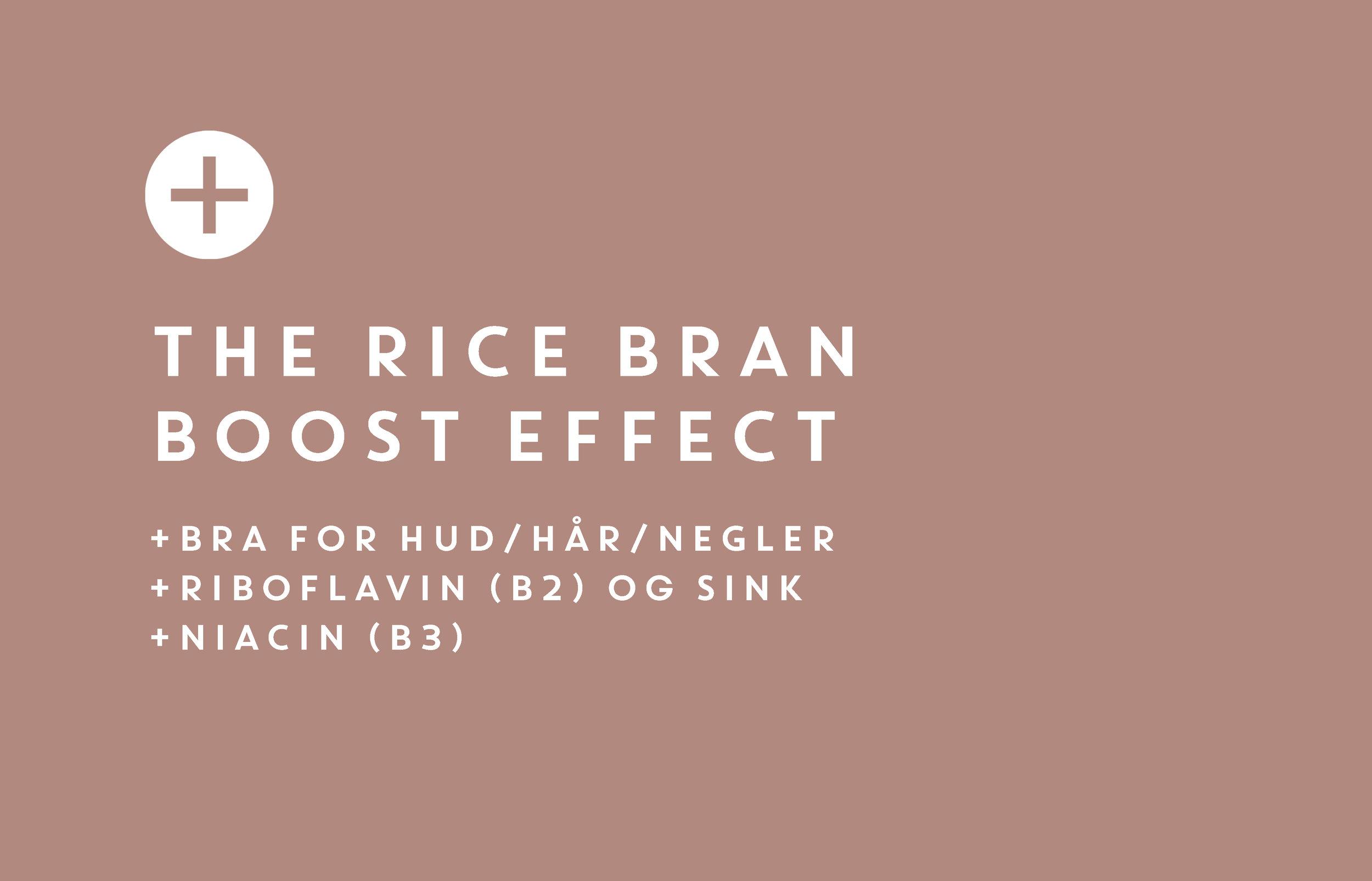 Rice Bran2 siste.jpg