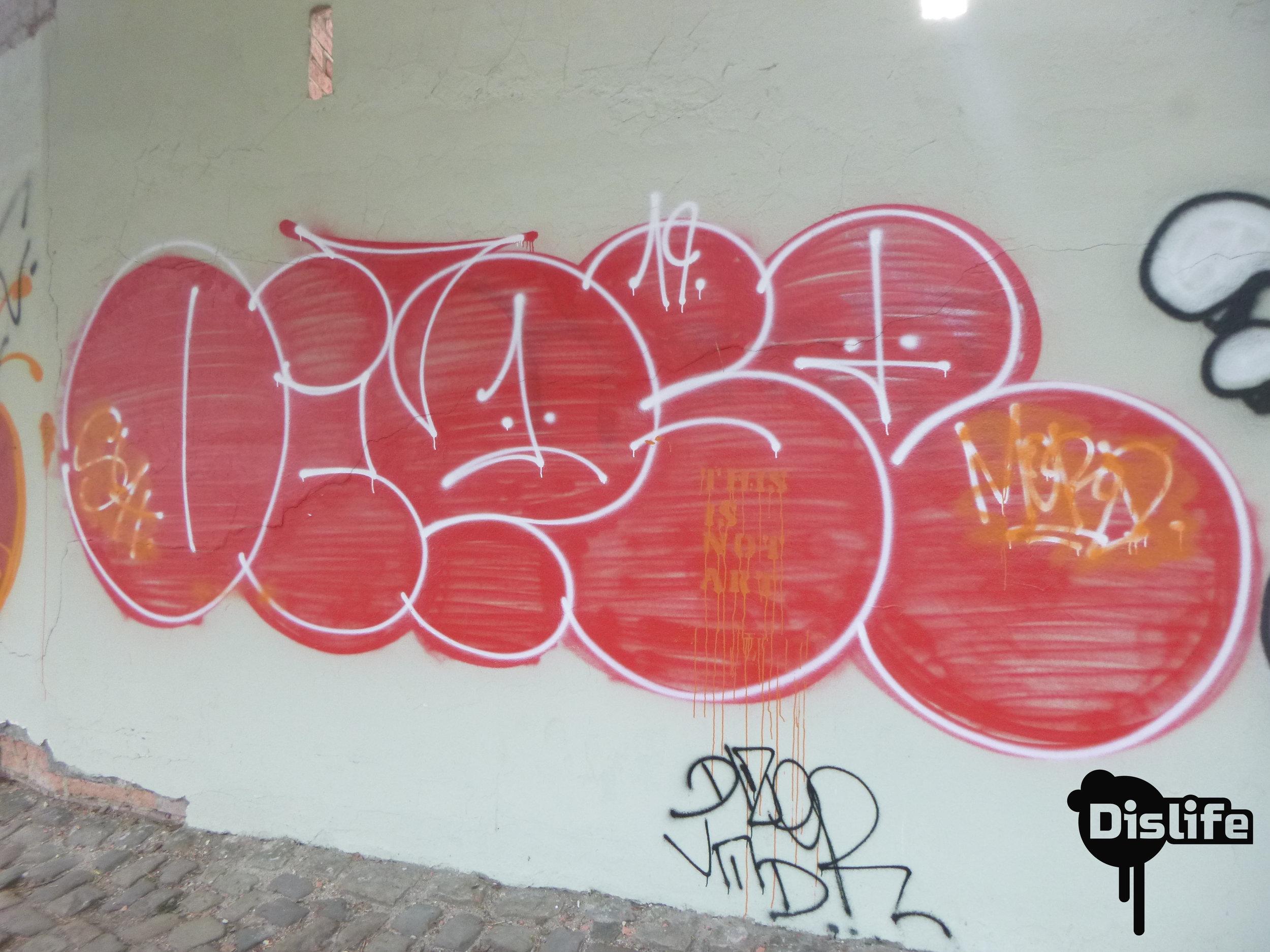 P1020873.JPG