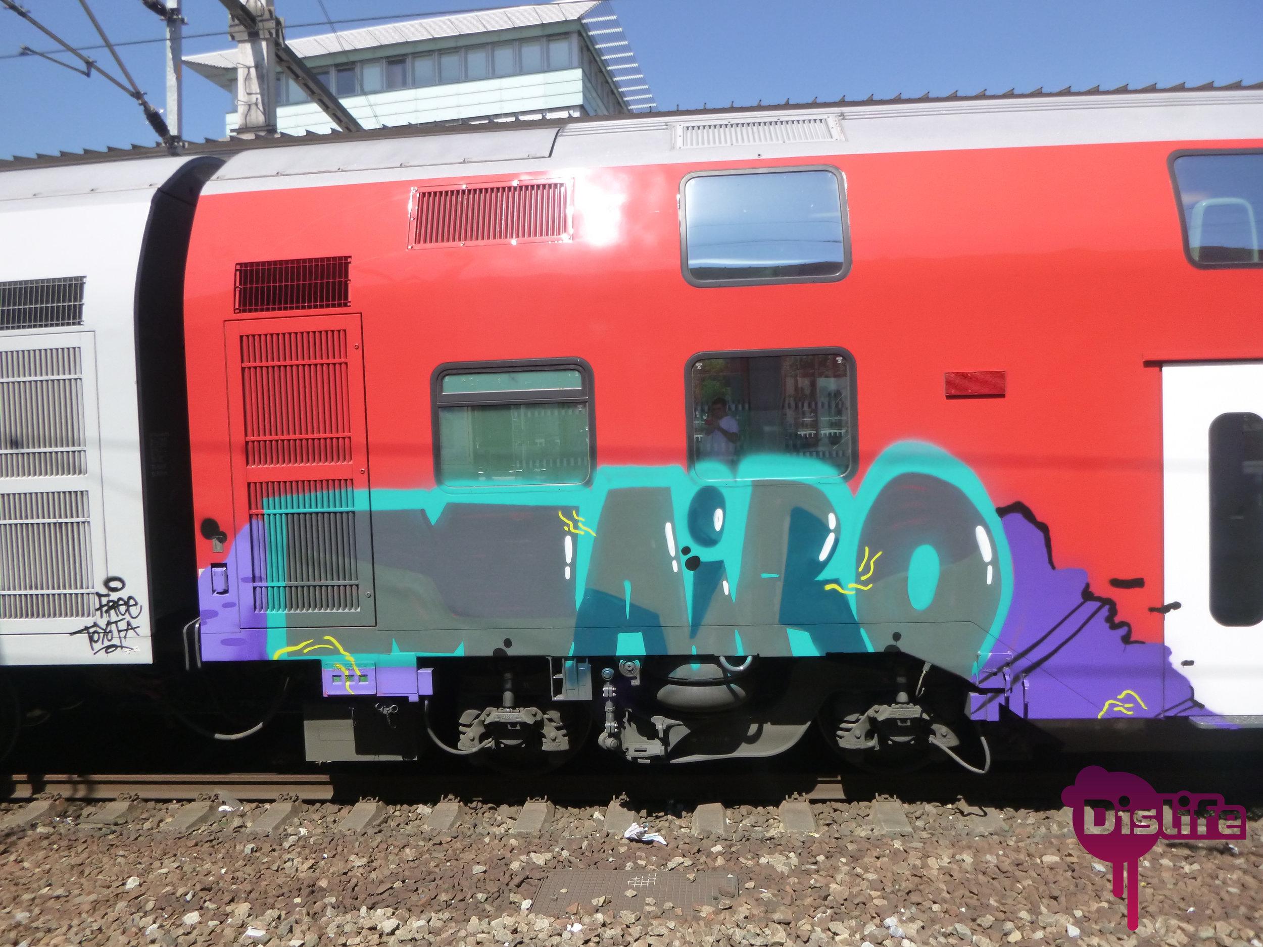 P1030261 - Copia.JPG
