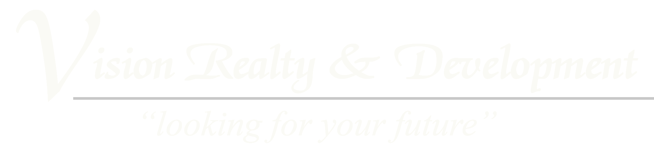 Vision Realty Logo (white).png