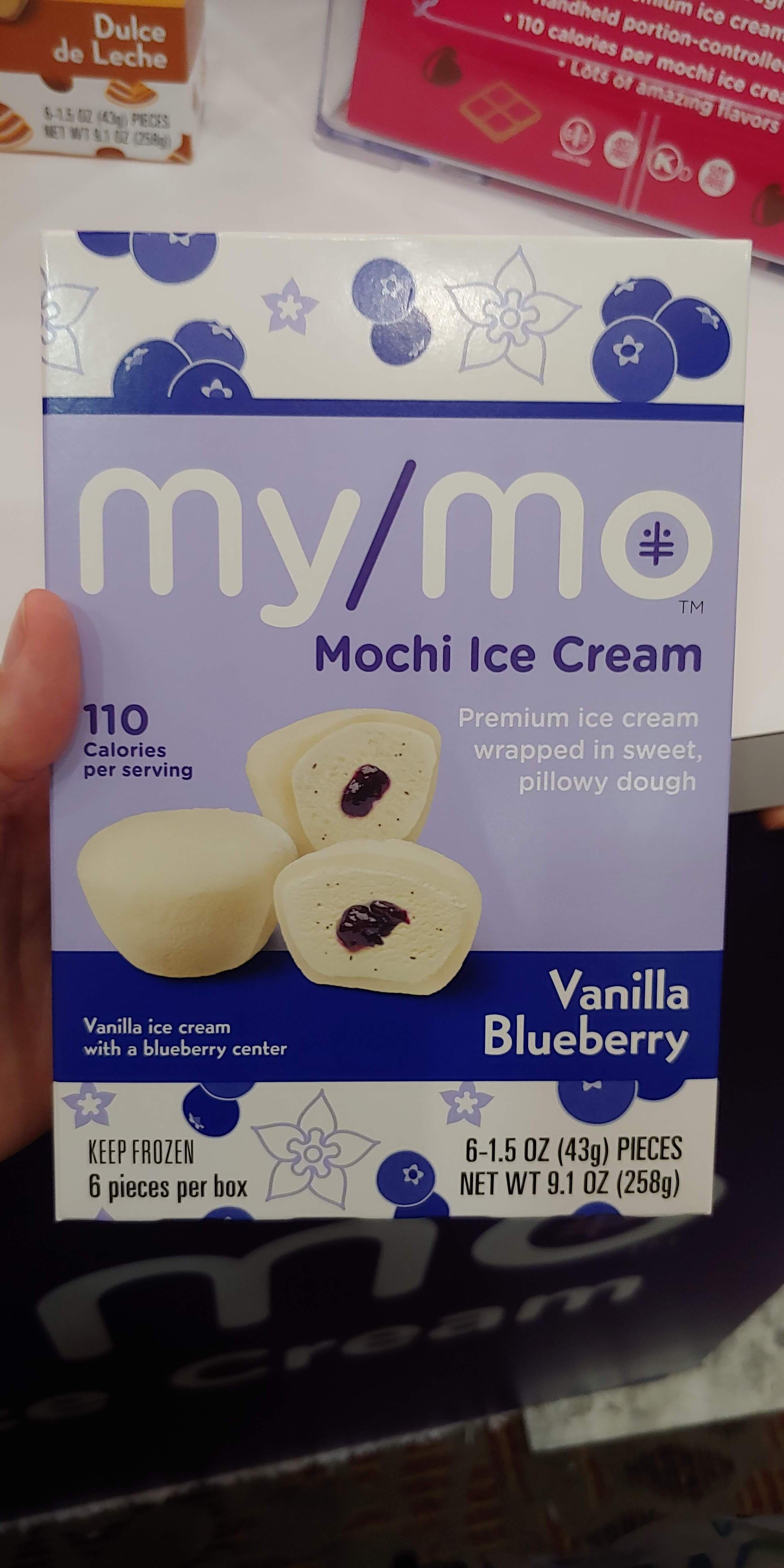 My fave - vegan rice mochi (love!)