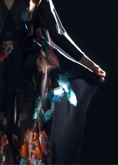 Highlighted Details, Blue Bird in Light on Black Silk