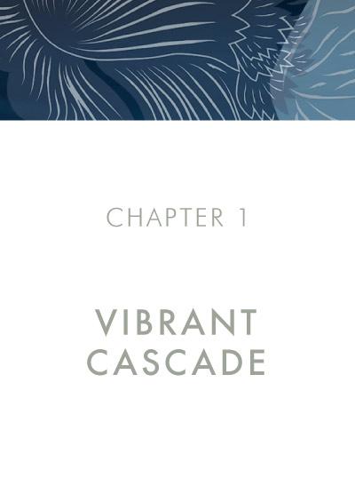 MENG Menswear Chapter 1 Vibrant Cascade Banner Image