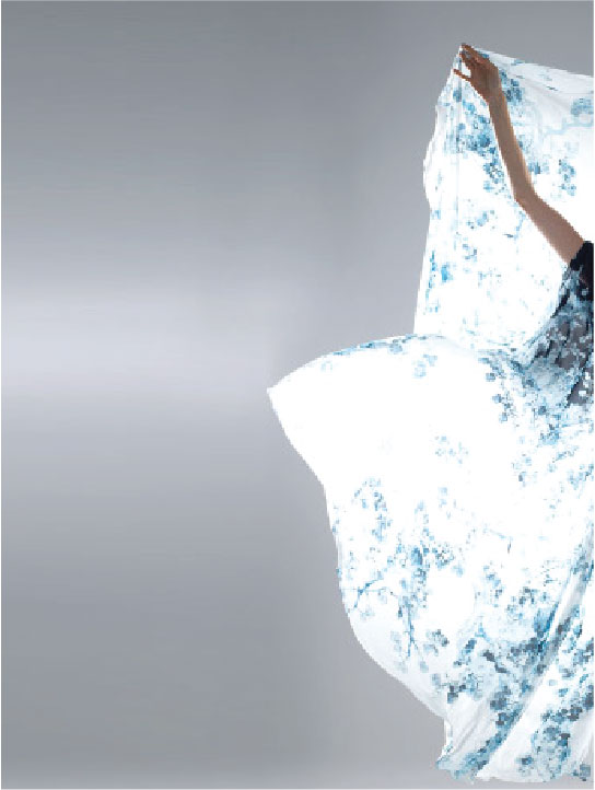 Silk in the Light - Blue Details Adorn White Silk