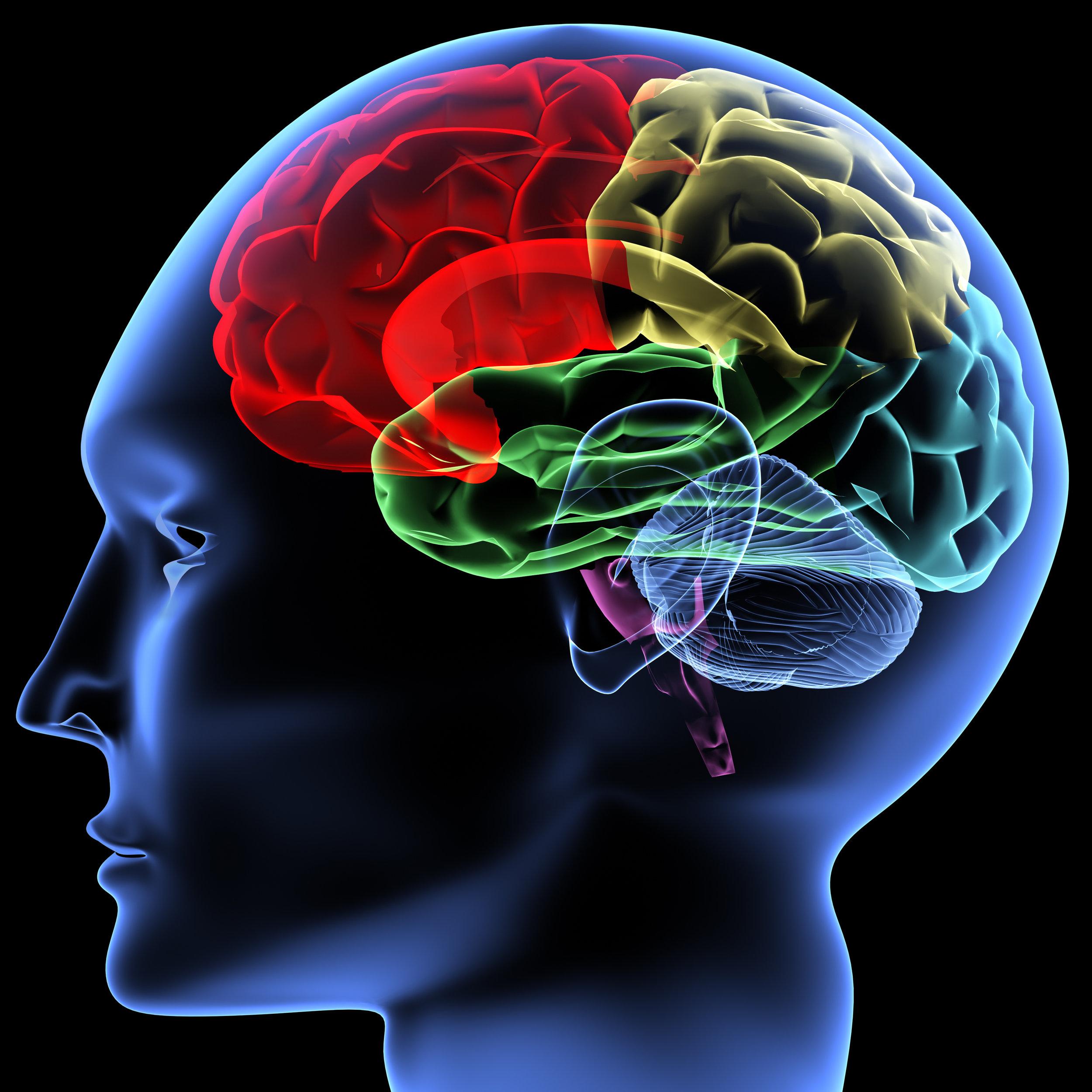 Sport Psychology & Mental Performance -