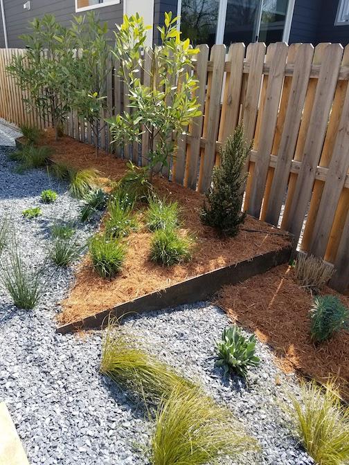plants-corten-steel-wall.jpg