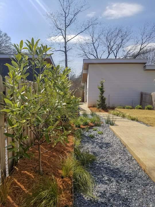modern-backyard-humzah-khraim.jpg
