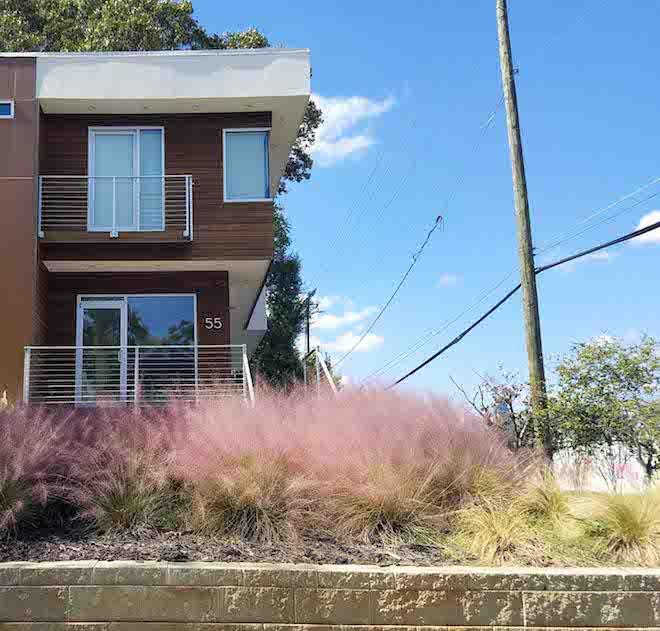 modern-home-tall-grass.jpg