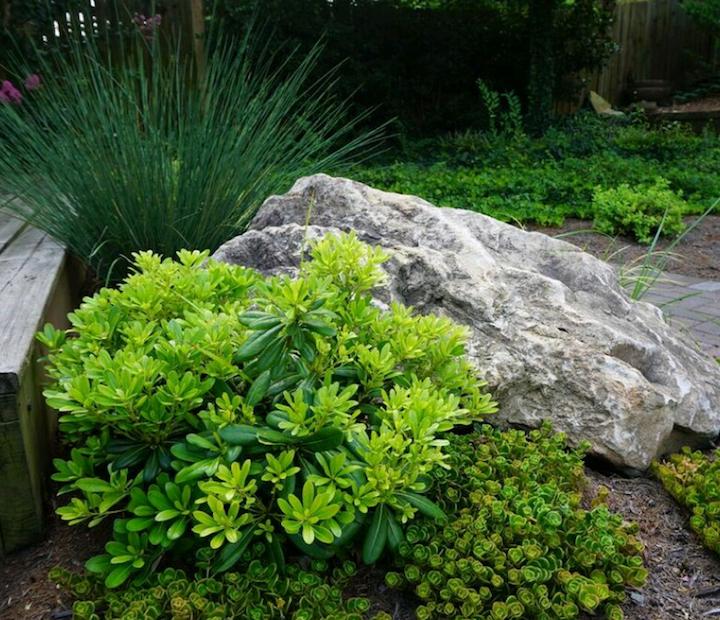zen-garden-backyard-atlanta.jpg