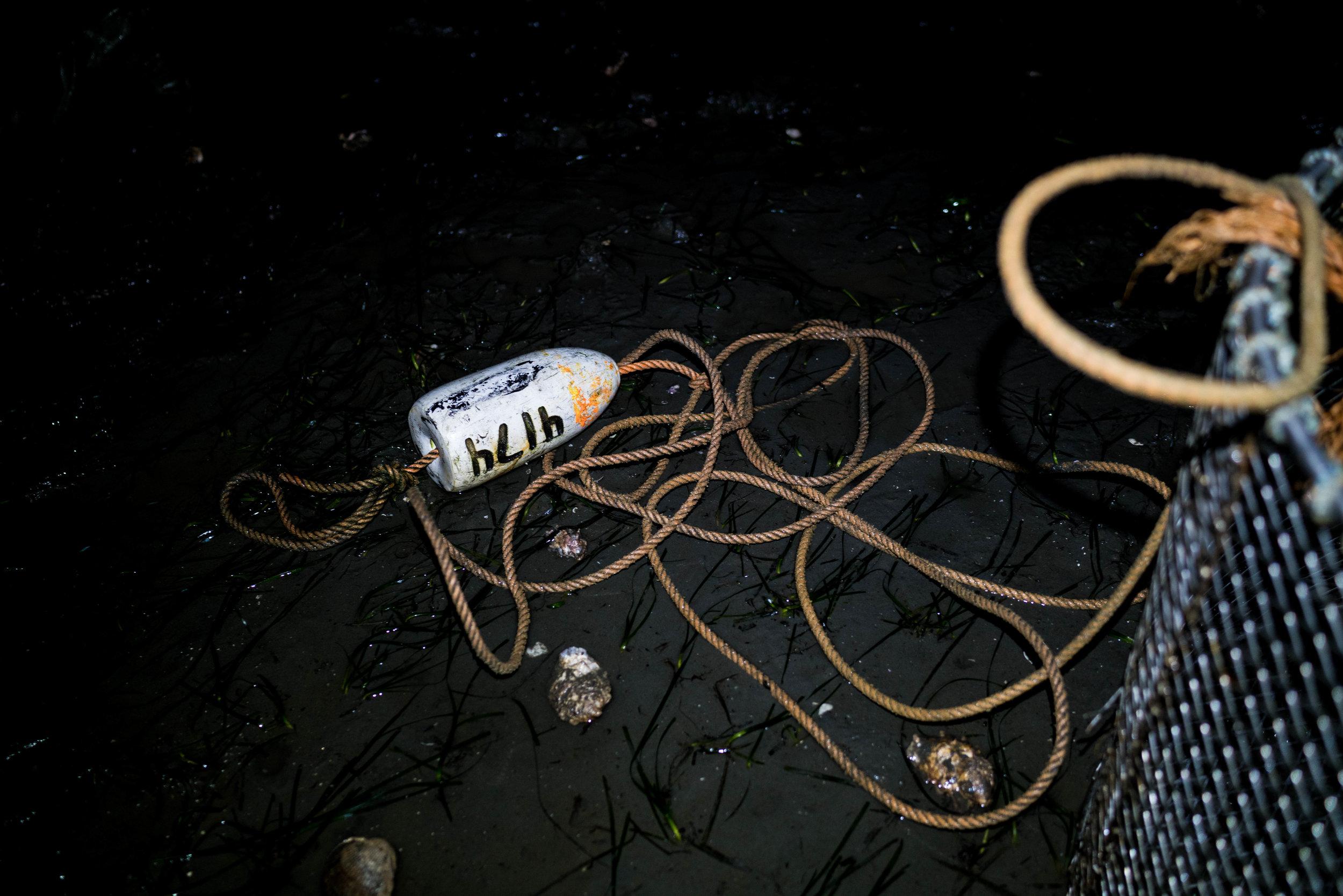 drayton harbor oysters-dylansantosgreen-24.jpg