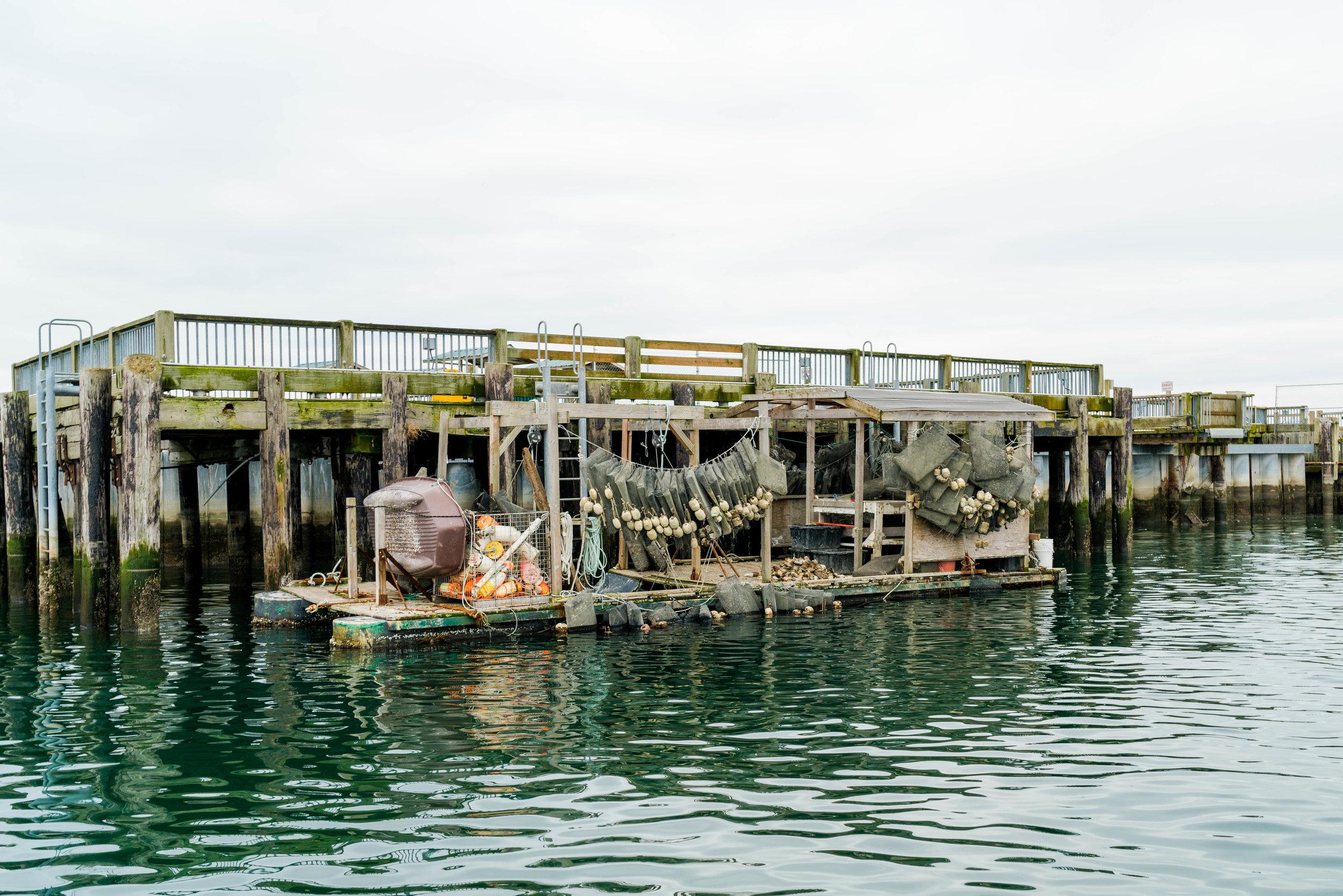 dho boat- 2019 - dylansantosgreen-16.jpg