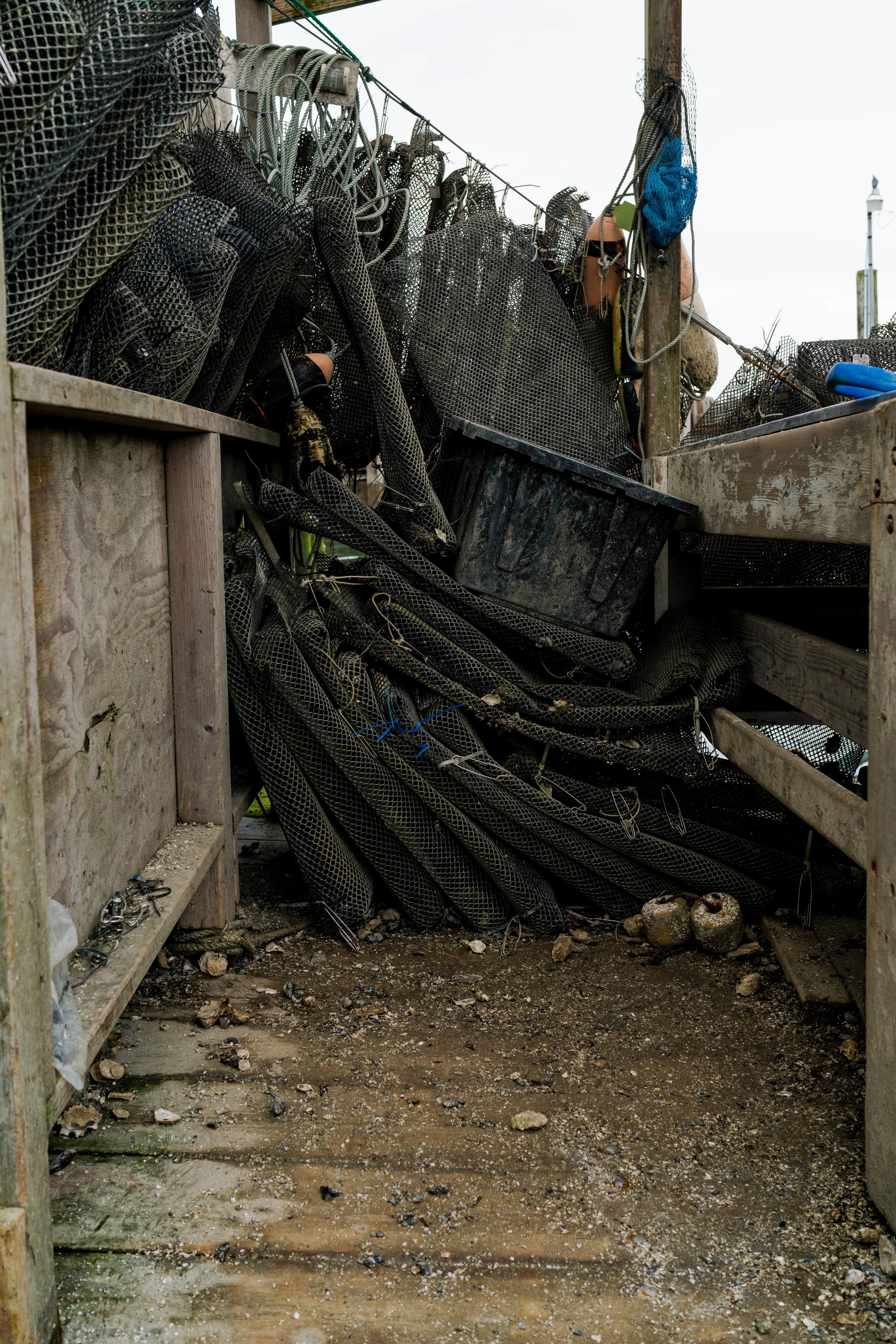 dho boat- 2019 - dylansantosgreen-17.jpg