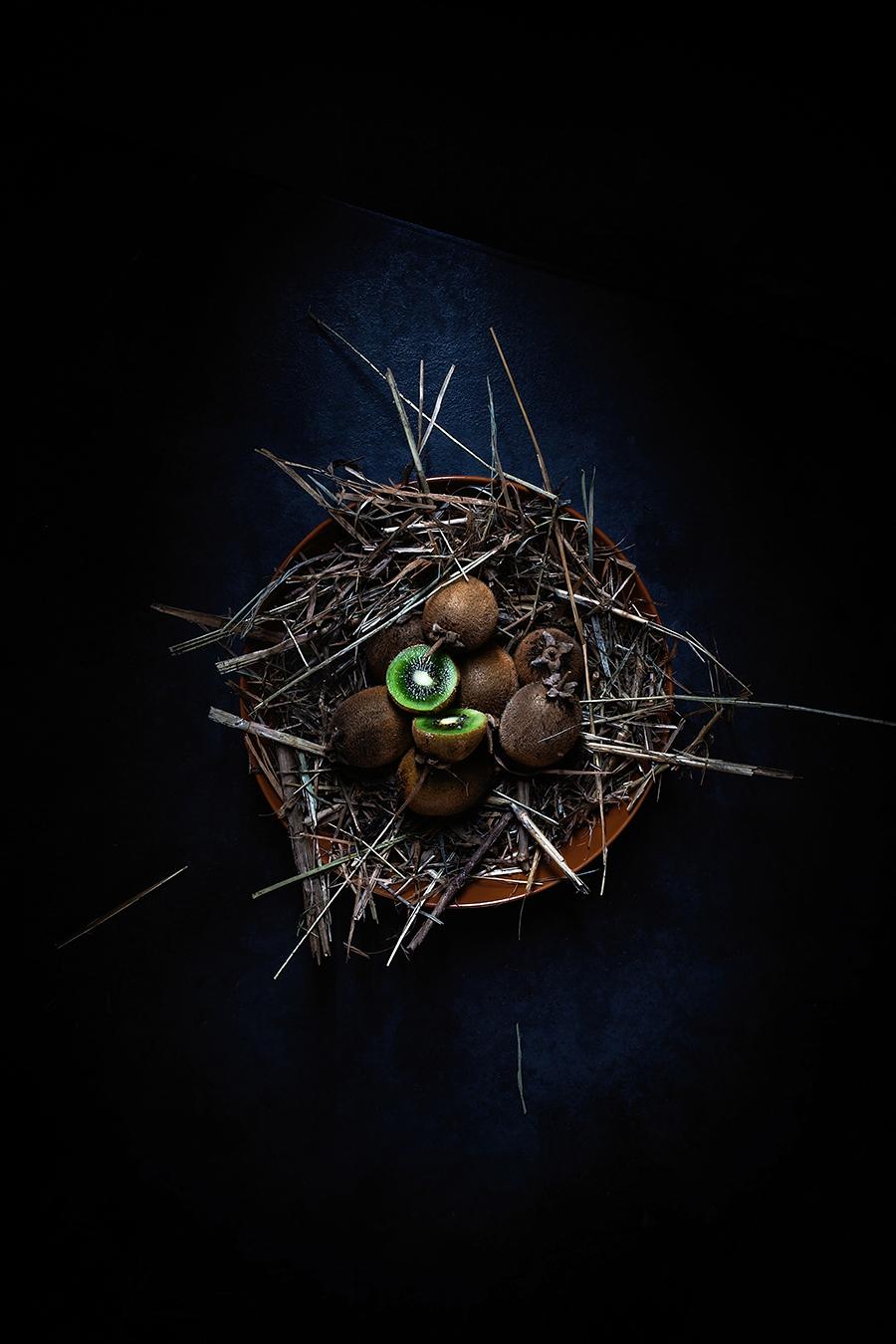 The Hatchling.jpg