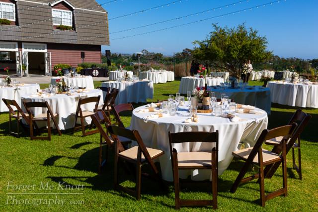 Wescott_wedding-471-41