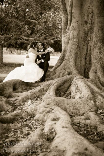 vince_gloria_wedding_5III4398
