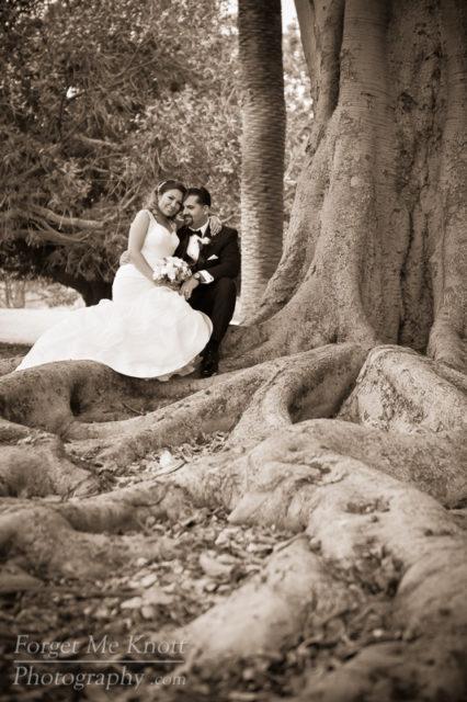 vince_gloria_wedding_5III4393