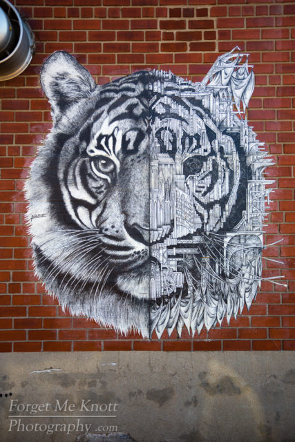 Tiger Art, New York city graffiti wall urban