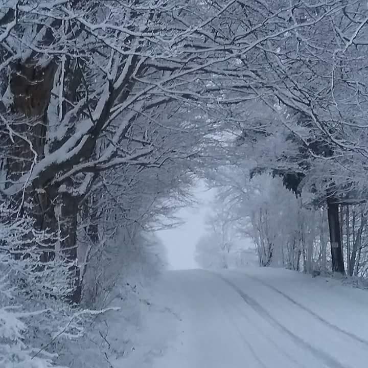 March Snow_ W Hoosick  MBrott.jpg