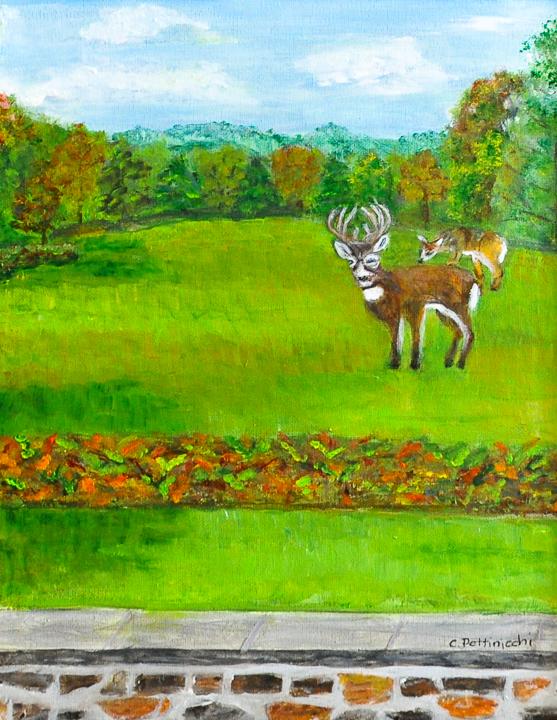 Lourdes Meadow