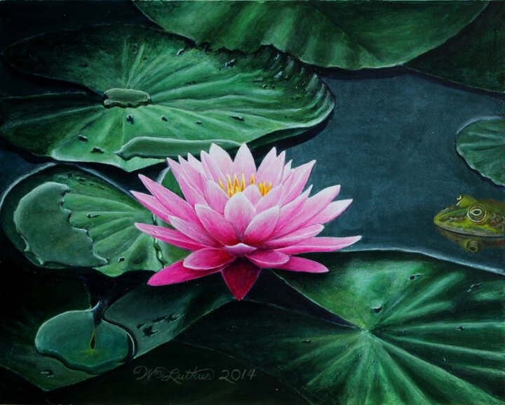 """Water Lily"" acrylic"