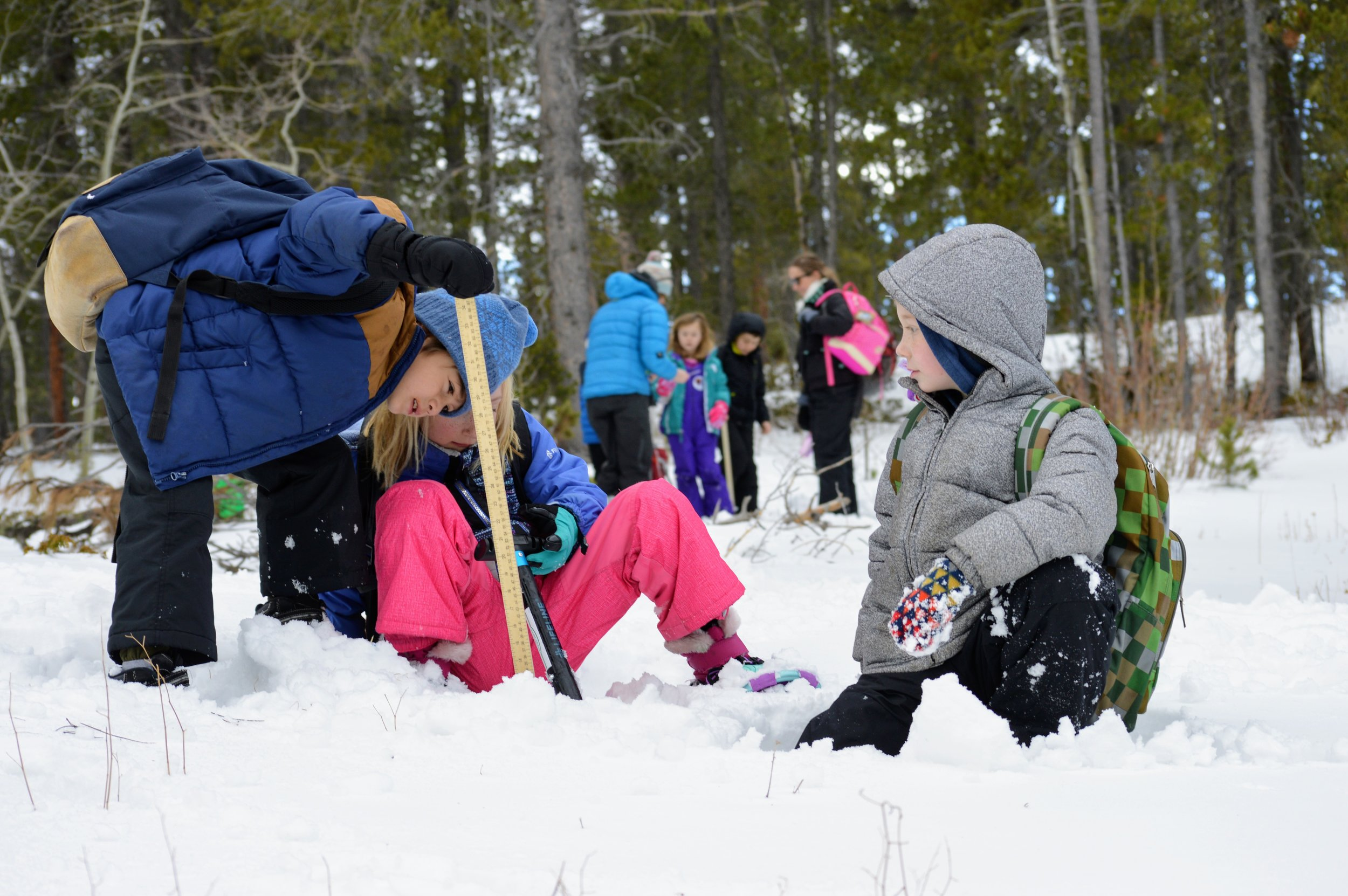 Winter Wildlands Alliance Snow School - Each winter Niwot Ridge LTER, Wild Bear Mountain Ecology Center and Winter Wildlands Alliance bring elementary school children from the Boulder-Denver Metro area to the mountains. In the 2017-18 school year, approximately 120 1st-6th grade students and their teachers spent a day on snowshoes with us learning about snow science, the importance of snow, and about some aspects of LTER science. Niwot graduate students have also helped design teaching activities for the national Snow School network, such as the Snowpack Dust Experiment, which are now being taught across the country.