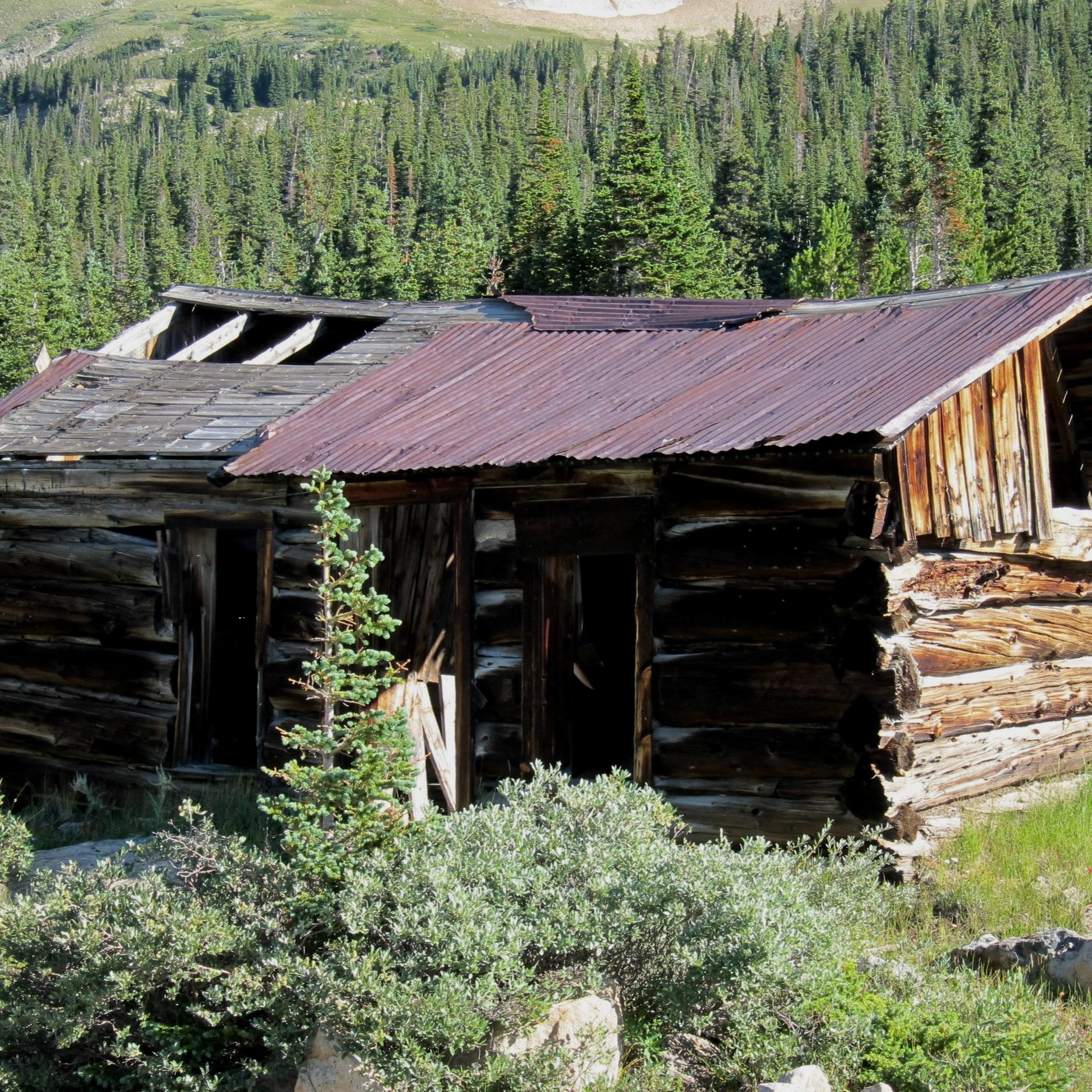 1980 - Year the Niwot Ridge LTER was established