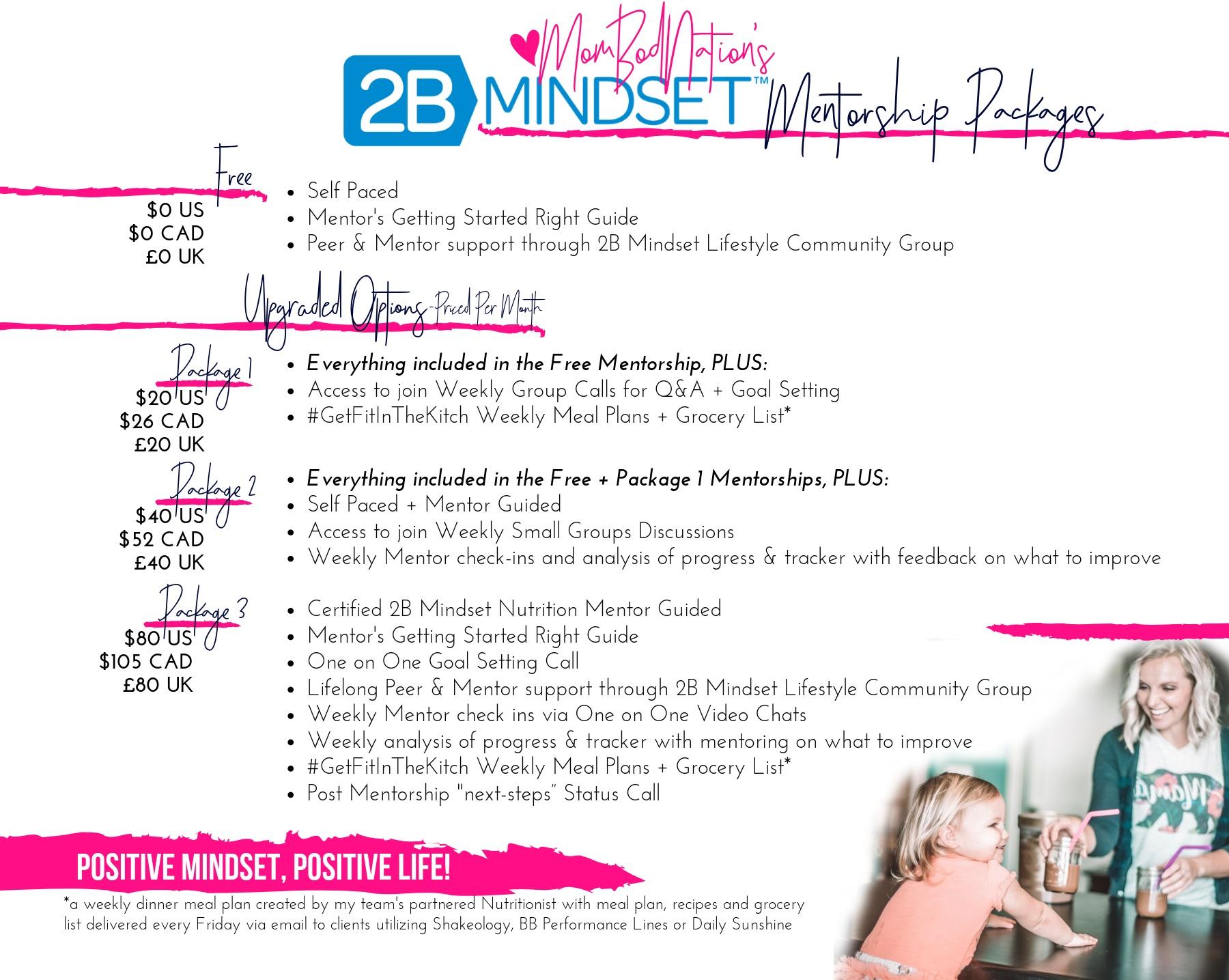 2B+Mindset+Mentorship+Options+%281%29.jpg