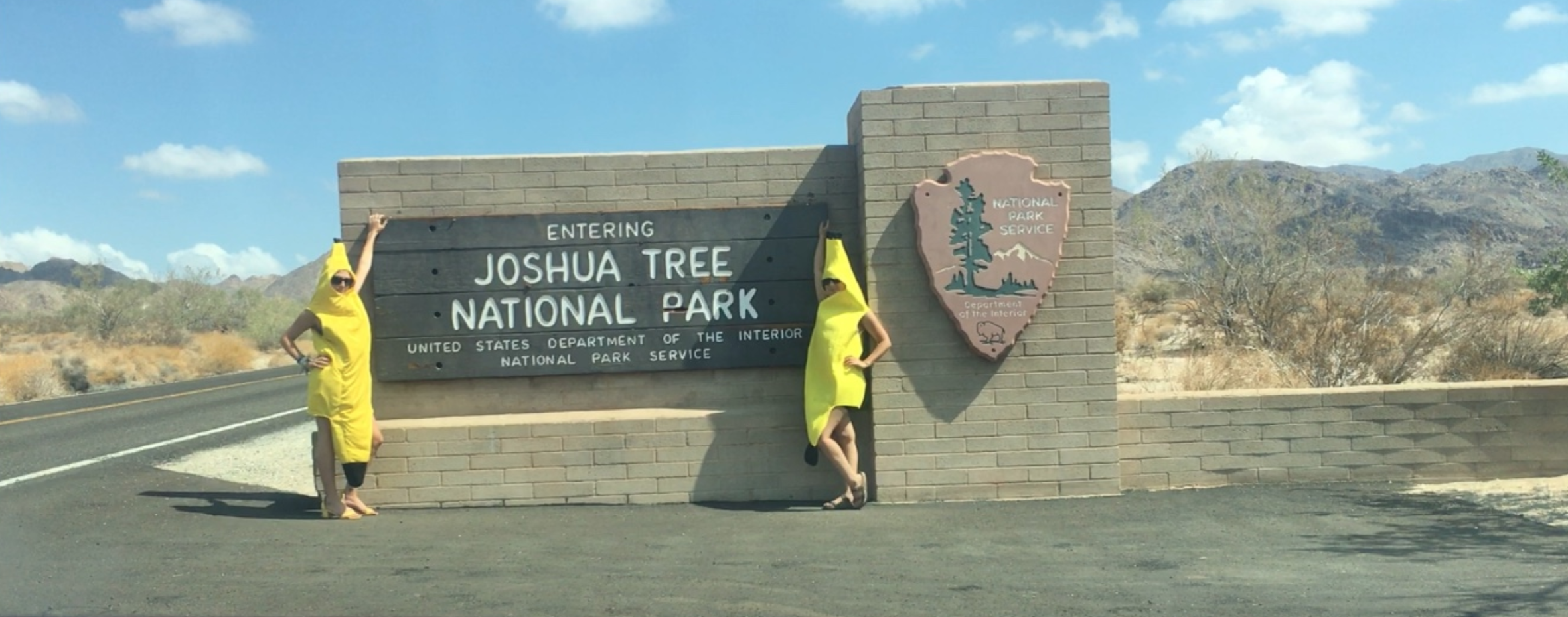11 - bananas at Joshua Tree.png