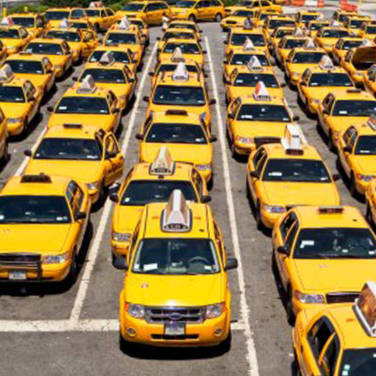 Which taxi is the best one?