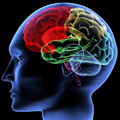 neurorehabilitation_conference.jpg