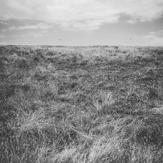 #countryside #unitedkingdom #simplicity #lisakuhnleinphotographer