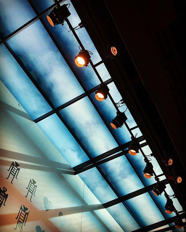 #burkemuseum #thenewburke #openingsoon #seattle #lisakuhnleinphotographer