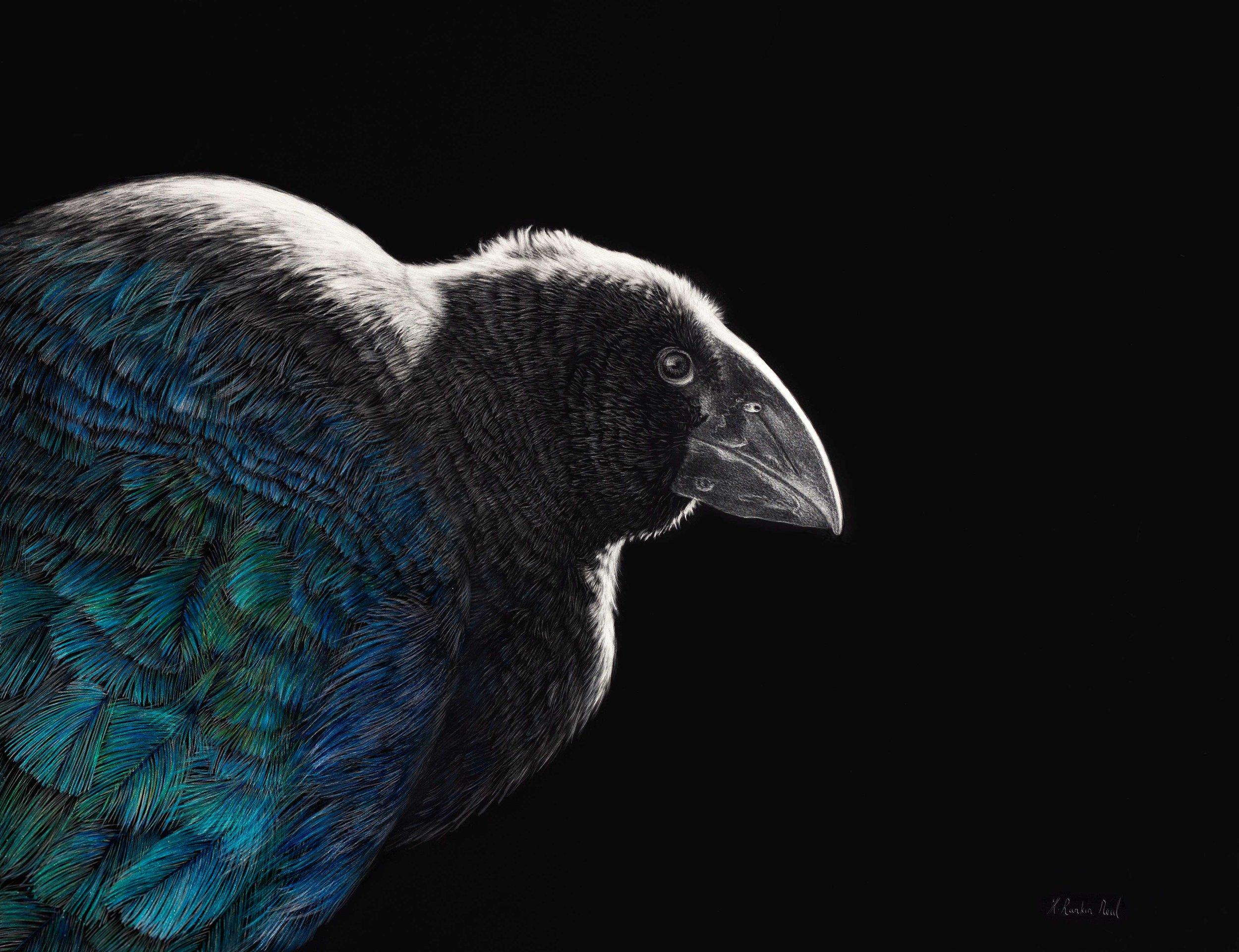 98---Karen-Rankin-Neal---Back-from-the-Brink-(NZ-Takahe)---$2850.jpg